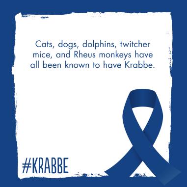KrabbeAwareness23