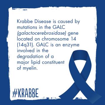 KrabbeAwareness3